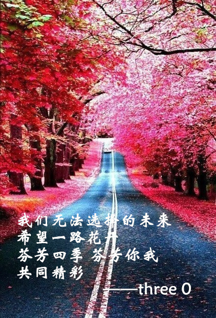 日本樱花歌曲_关于樱花的日本歌曲