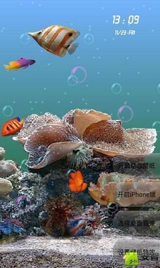 3d海底世界動態壁紙(來自:)