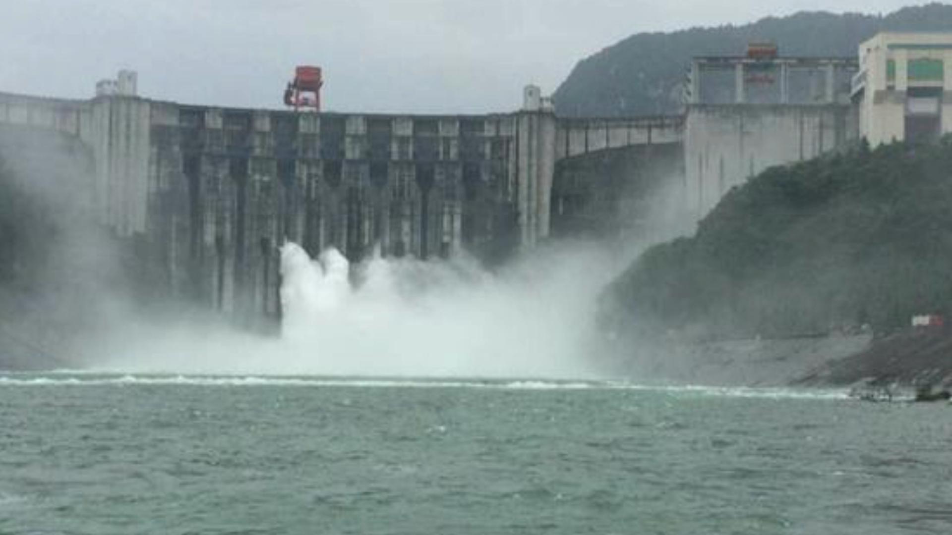 """雜交鱘魚逃逸,這些鱘魚目前已經擴散到長江中下游干流中,""""洞庭湖"""